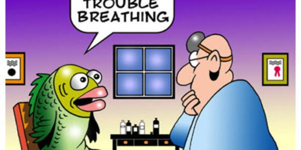 improve breathing
